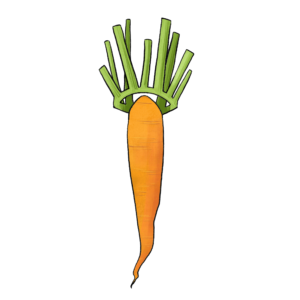 illustration of a carrot with a leaf crown